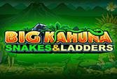 Big Kahuna - Snakes & Ladders