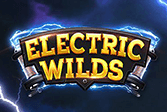 Electric wilds