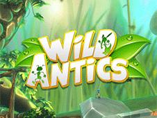 Wild Antics