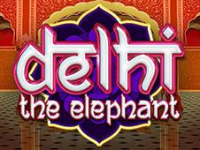 Delhi The Elep