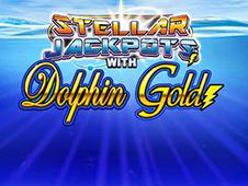 Dolphin Gold - Stellar Jackpots