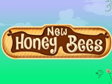 New Honey Bees